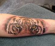 tattoo_motive fauna_03