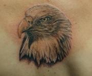 tattoo_motive fauna_15